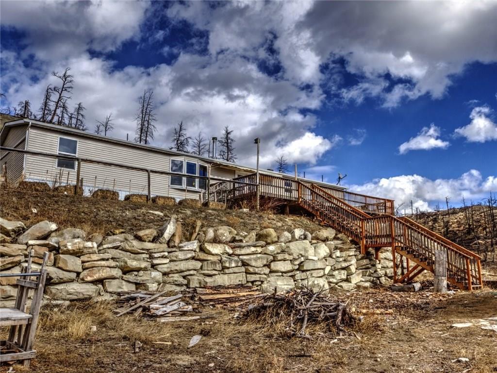Photo of 239 Buckskin  Roundup  MT