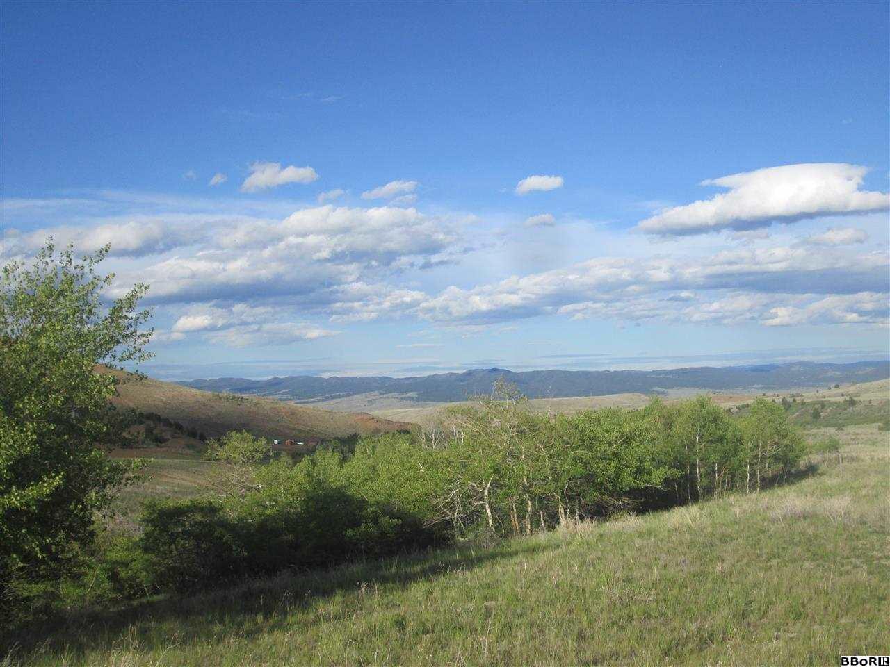 865 Aspen Hills Trl, Anaconda, MT 59711