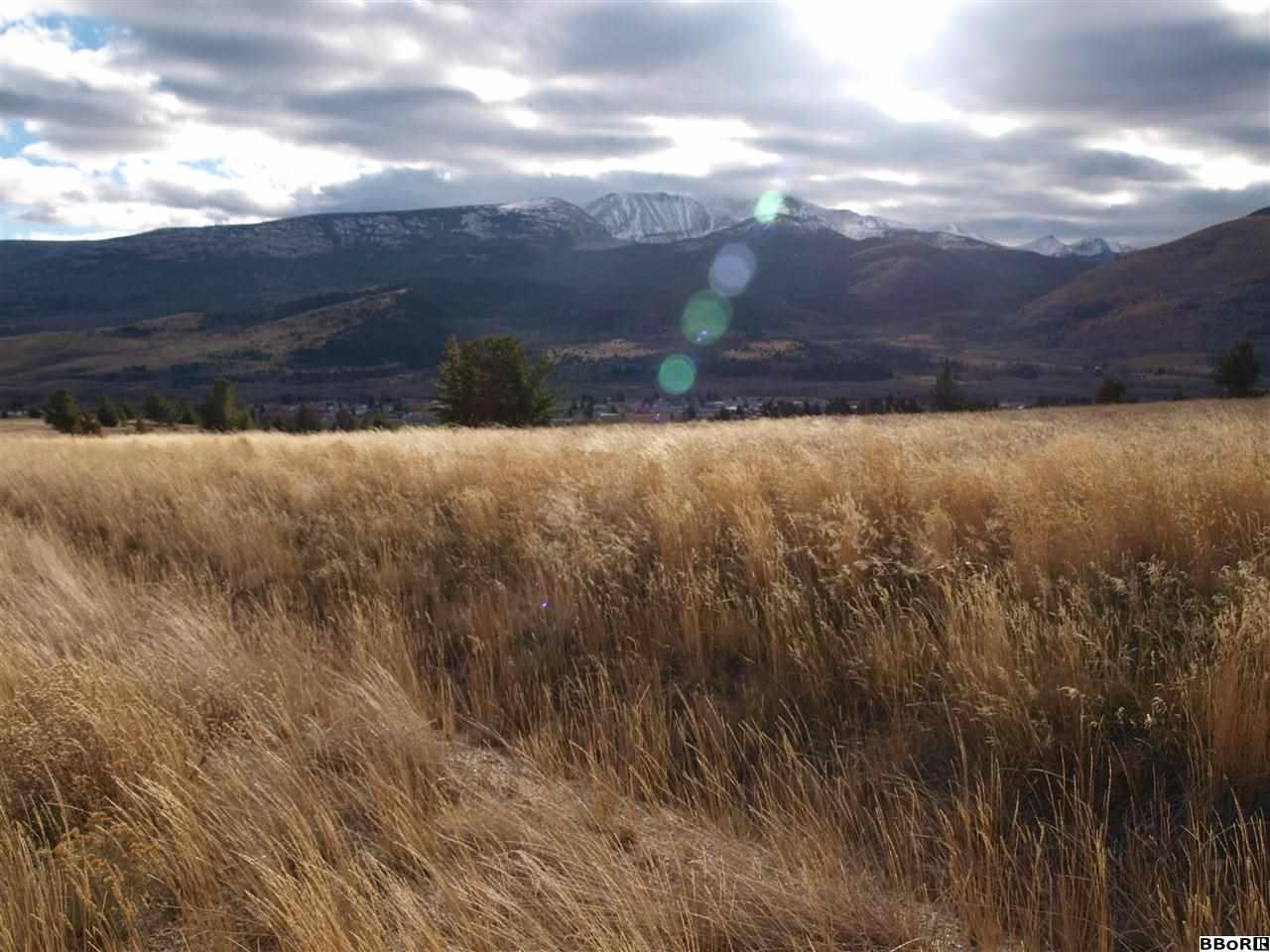 Pintlar Peaks Dr, Anaconda, MT 59711