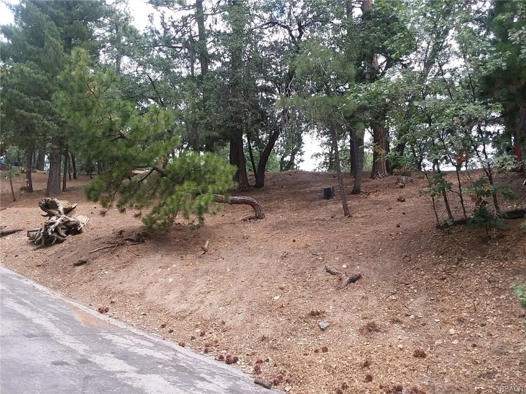 0 Lone Pine-Arrowbear Park Drive - photo 0