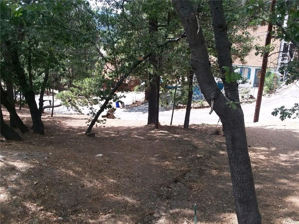 0 Lone Pine-Arrowbear Park Drive - photo 1