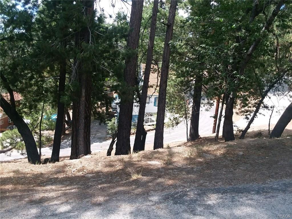 0 Lone Pine-Arrowbear Park Drive - photo 3