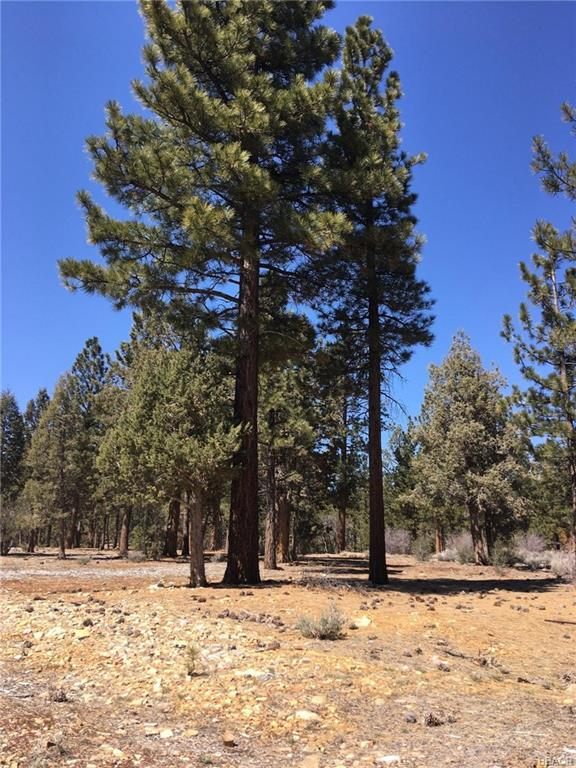 One of Big Bear Homes for Sale at 1315 Shadowhill Court
