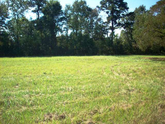 Real Estate for Sale, ListingId: 25604595, Atmore,AL36502