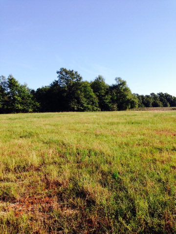 5 acres by Perdido, Alabama for sale