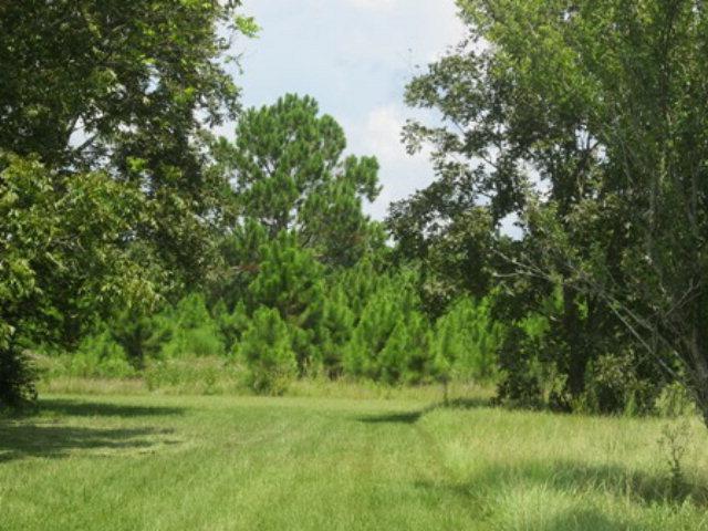 5.19 acres by Elberta, Alabama for sale