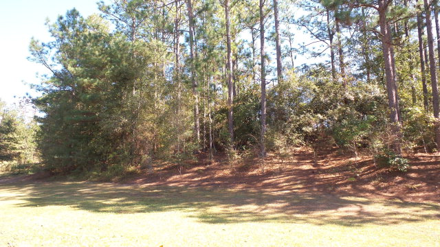 9805 Brown Rd, Bay Minette, AL 36507