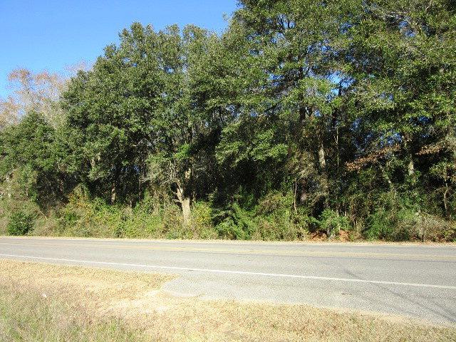 Real Estate for Sale, ListingId: 31793199, Irvington,AL36544