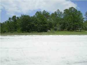 Vacant Land - Chipley, FL (photo 3)
