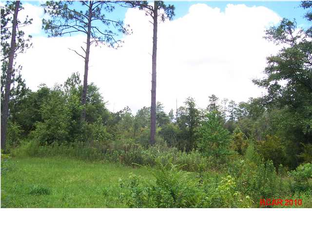 000 Silver Lake Rd, Fountain, FL 32438