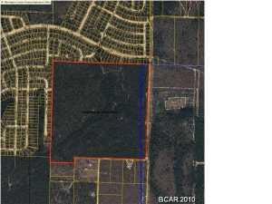 Image of Acreage for Sale near Chipley, Florida, in Washington county: 160.00 acres