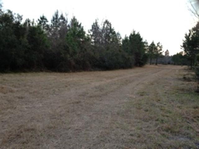 29.25 acres Early Branch, SC