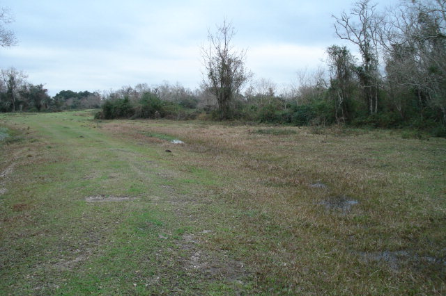 201 Acres Sh 288b Angleton, TX 77515