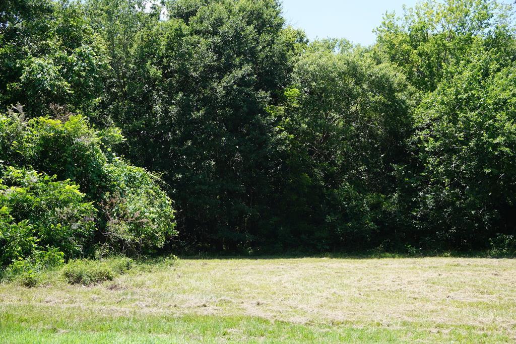 1050 Winchester Trail Angleton, TX 77515