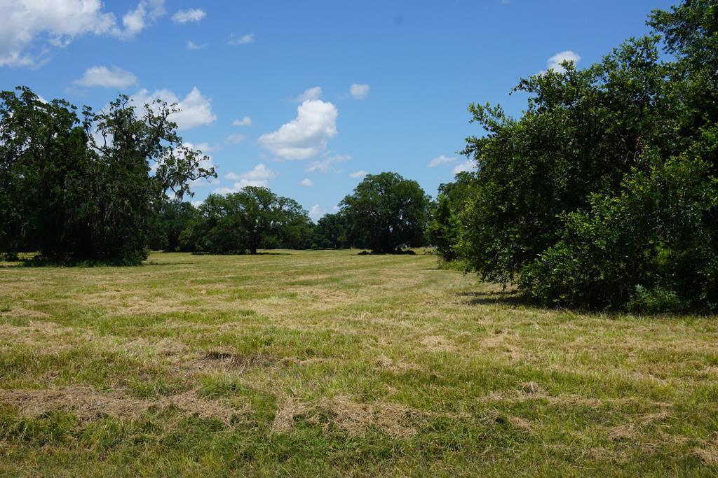 405 Pony Trail Angleton, TX 77515