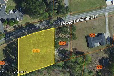 155 Flowers Pridgen Drive Whiteville, NC 28472