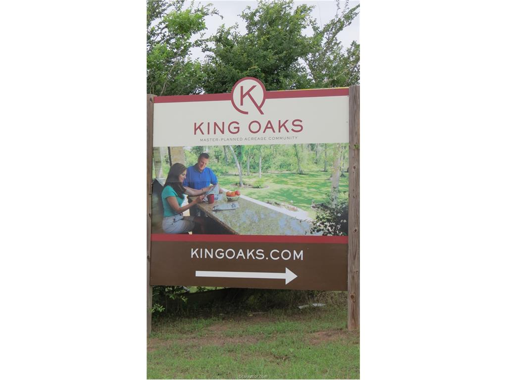 Lot 14 King Oaks Drive Iola, TX 77861