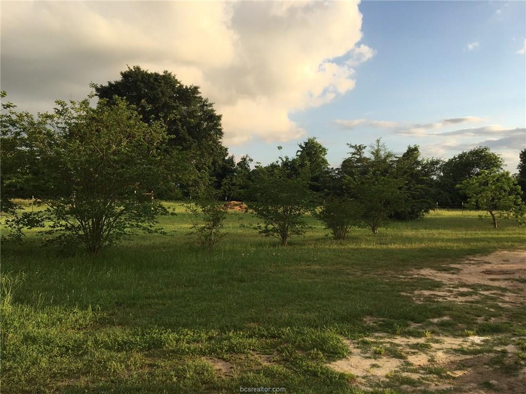 Photo of 22236 County Road 113  Iola  TX