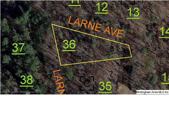 LARNE AVE WEAVER, AL 36277