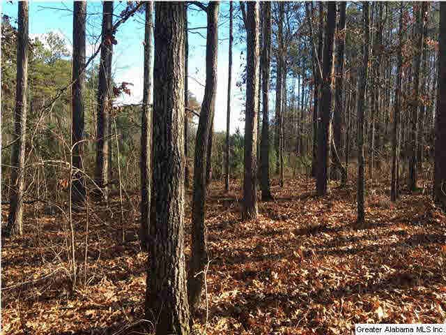 primary photo for 62 HAINES DR 62, VINCENT, AL 35178, US