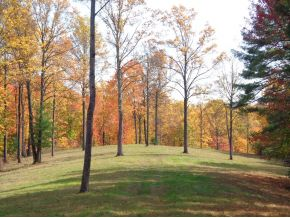 40 acres in Unionville, Indiana