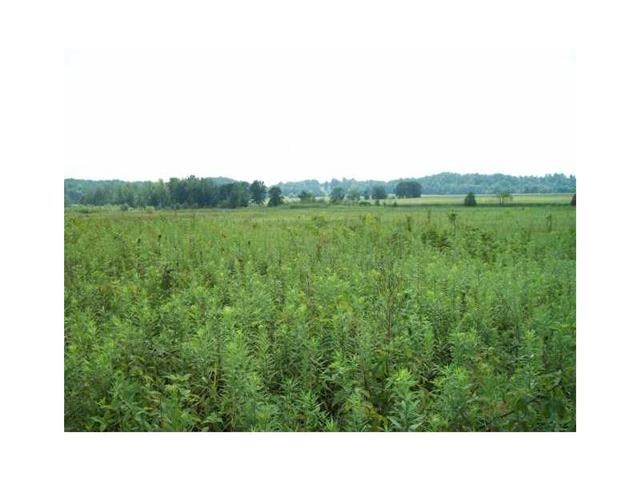 44.6 acres in Greencastle, Indiana