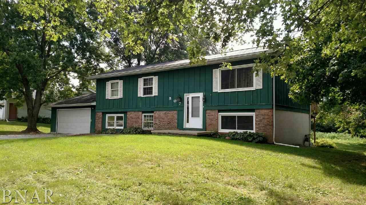 507 W Exchange St, Danvers, IL 61732