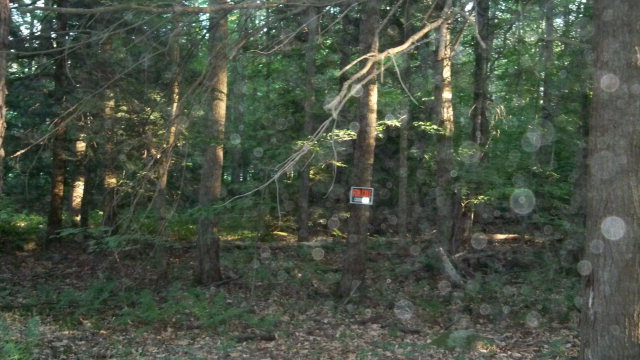 9 Lake Wood Road Laporte, PA 18626