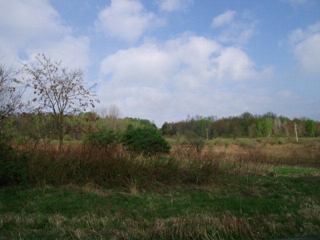 Mount Zion Rd, Wellsboro, PA 16901
