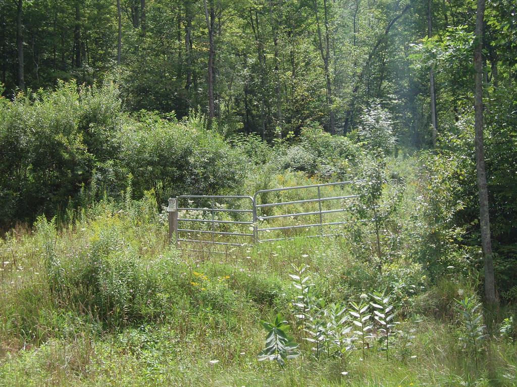 0 Bailey Creek road Millerton, PA 16936
