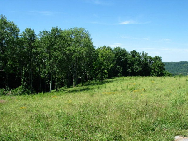Lot 5 Woodland Ridge Maysville, KY 41056
