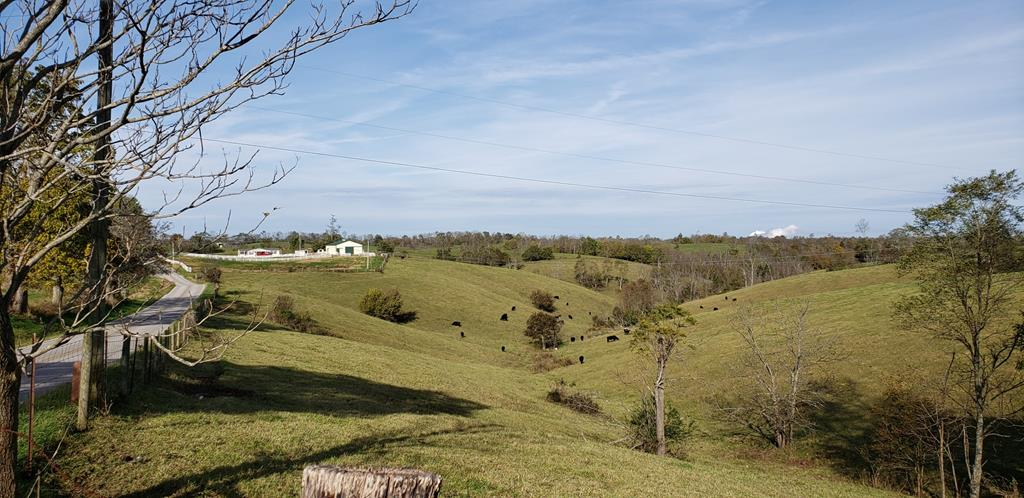 0 Stonelick Road Maysville, KY 41056