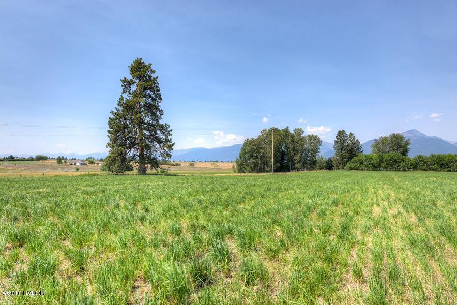 4341 Burro Ln, Stevensville, MT 59870