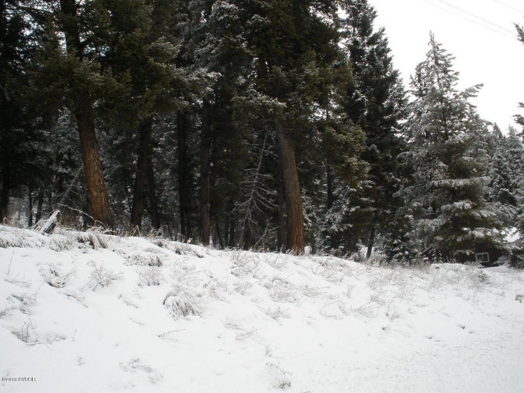Nhn East Fork RD Sula, MT 59871