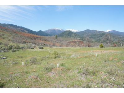 Real Estate for Sale, ListingId: 31541606, Weaverville,CA96093