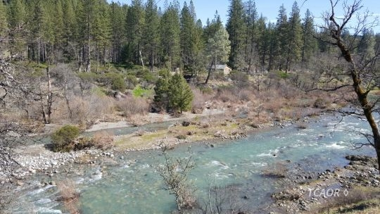 351 N Fork Mad River Rd Ruth, CA 95552