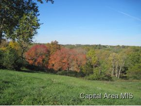 Real Estate for Sale, ListingId: 25163542, Petersburg,IL62675