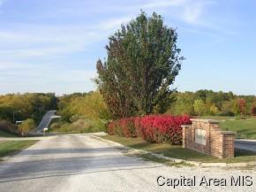 Real Estate for Sale, ListingId: 28431940, Jacksonville,IL62650