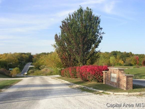 Real Estate for Sale, ListingId: 28431944, Jacksonville,IL62650