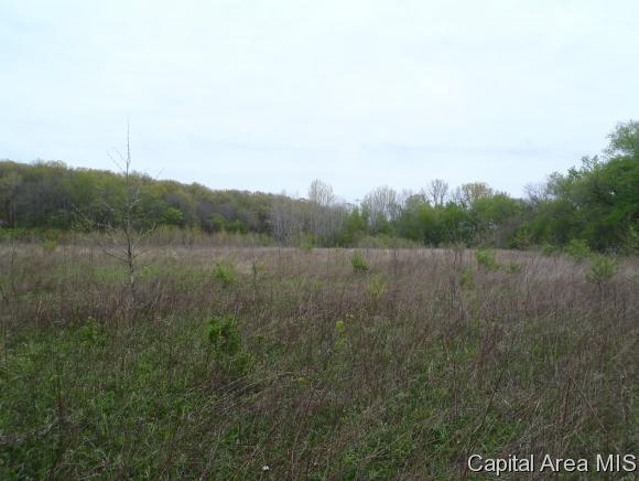 Real Estate for Sale, ListingId: 33319016, Girard,IL62640