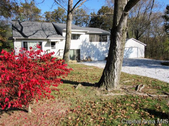 Tri-Level, Residential,Single Family Residence - Auburn, IL (photo 2)