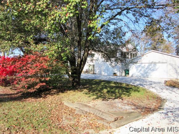 Tri-Level, Residential,Single Family Residence - Auburn, IL (photo 3)