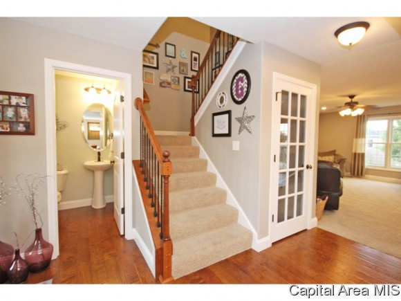 Residential,Single Family Residence, 2 Story - Chatham, IL (photo 4)