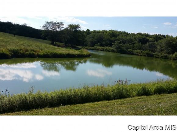 http://photos.listhub.net/CAARIL/175358/2?lm=20170901T144005