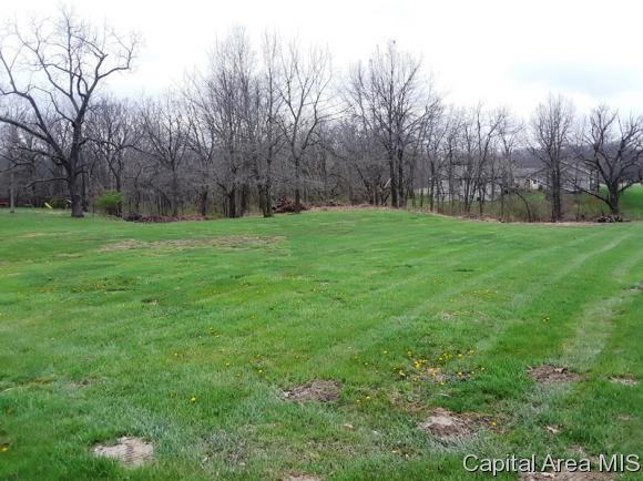 Lot 4 Campbell's Crossing Carlinville, IL 62626
