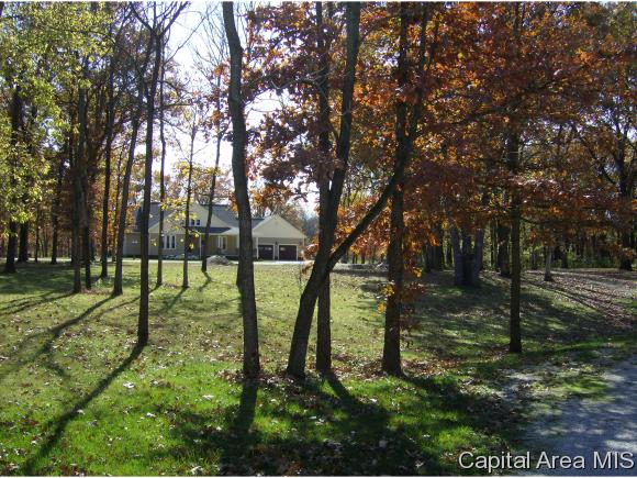 Lot 9 Brock Court Carlinville, IL 62626