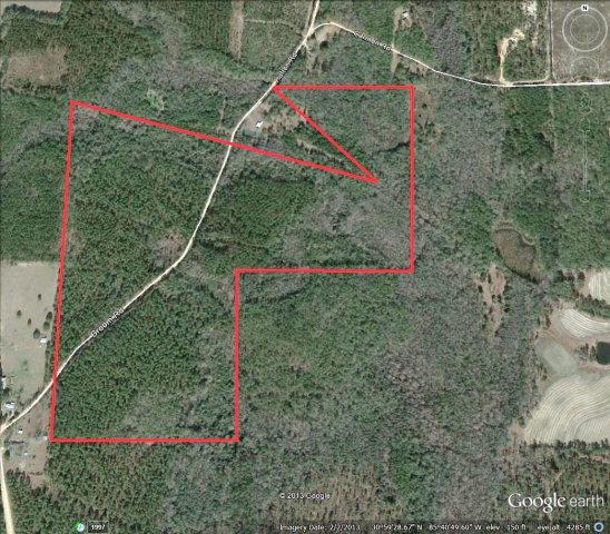 Image of Acreage w/House for Sale near Esto, Florida, in Holmes county: 117.00 acres