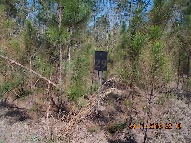 5.71 acres by Westville, Florida for sale