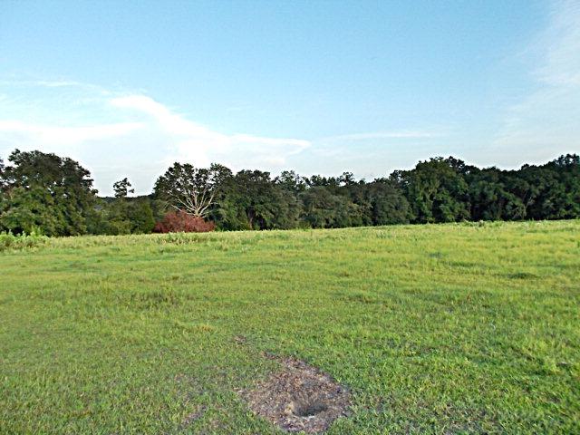 Real Estate for Sale, ListingId: 28792656, Graceville,FL32440