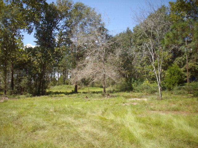 9.26 acres by Bonifay, Florida for sale